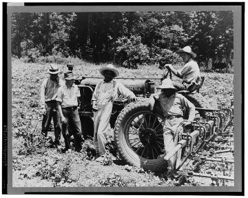 Hillhouse, Mississippi Delta cooperative farm (1937 Jun) Lange